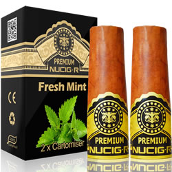 A Electric rechargeable cigar filter pack - MINT