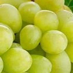 Eliquid Grape flavour