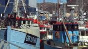 Hellefiskefiskeri i Nuuk