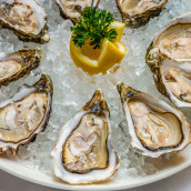 Oysters[1]