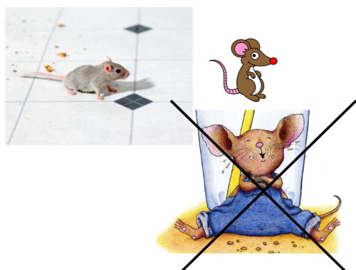 Artwork from the book - If You Give A Mouse A Cookie by mayakaulitz - Illustrated by Maya Kaulitz - Ourboox.com