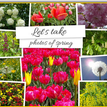 LET'S TAKE PHOTOS OF SPRING - ZEHRA-AKKAYA