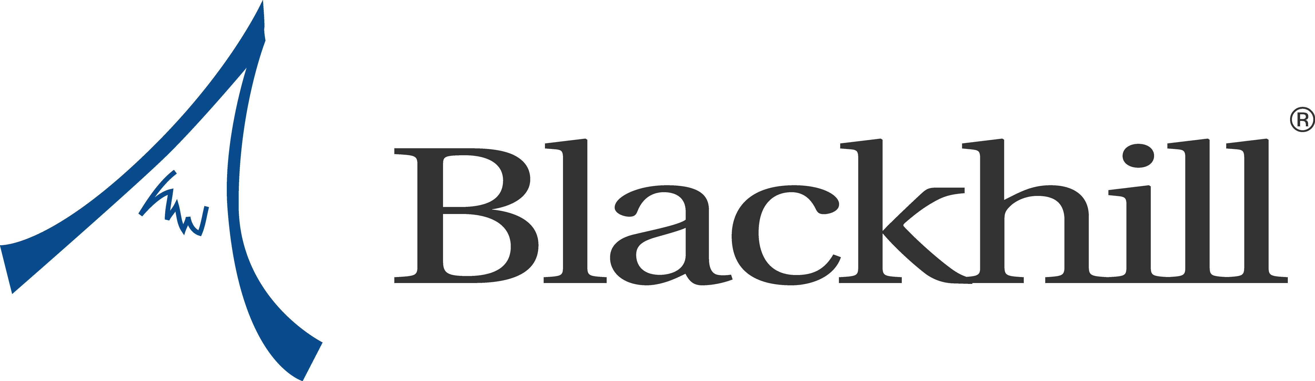 Black Hill Partners logo