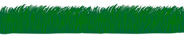 yeşil vadi