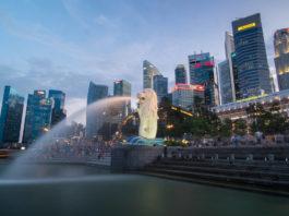 singapurun başarı öyküsü