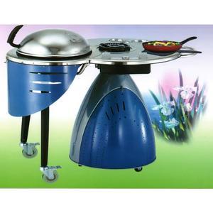Barbecue Venere con fornello laterale