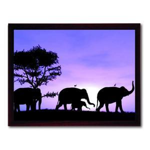 Thermoquadro Innovation Elefanti