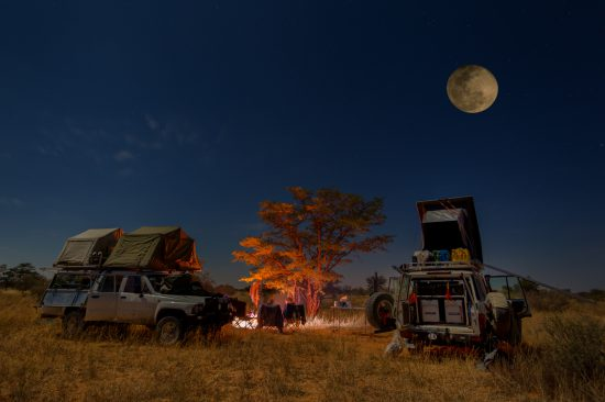 Safari drive under the stars and in a full moon
