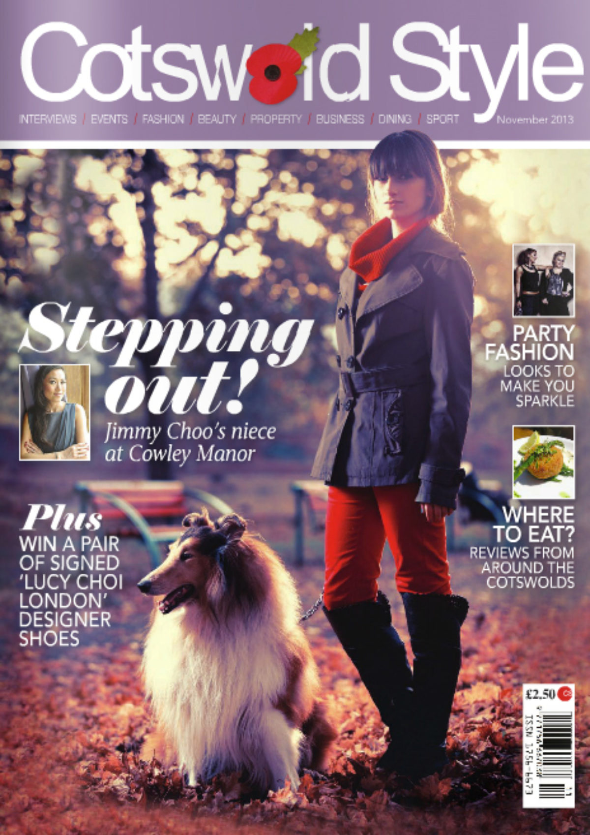 Cotswold Stepping Out Cover