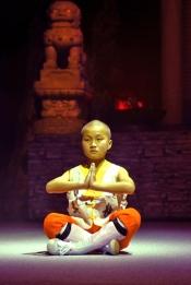 """""""Die Rückkehr der Shaolin"""" Tournee 2012"""