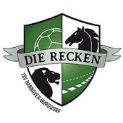TSV Hannover-Burgdorf - Füchse Berlin