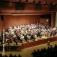 Deutsches Cello-Orchester