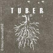 Tuber & The Sonic Dawn & Kungens Män