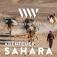 WunderWelten: Abenteuer Sahara + Festivaleröffnung