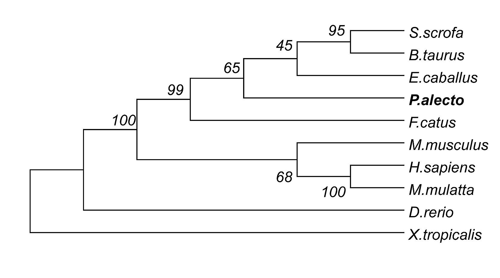 电路 电路图 电子 原理图 1668_929