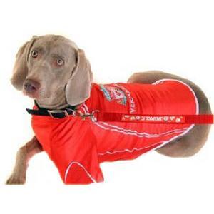 Liverpool F C Dog Shirt Large Www Unisportstore Nl