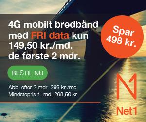 NET1 Internet