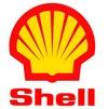 Shell thumb