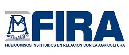 Forex chile great place to work