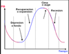Ciclo economico thumb