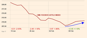 Feeder cattle index 18 feb col
