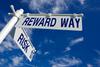 Enterprise risk management weighing risk vs reward thumb