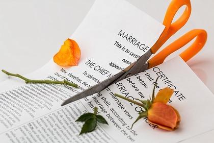 Regimen economico matrimonial foro