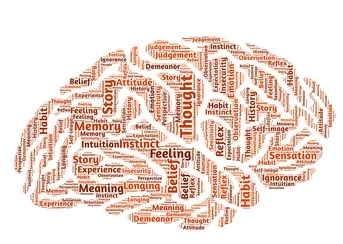 Gu%c3%ada definitiva para trabajar la inteligencia emocional foro