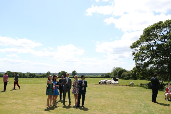 reception drinks with cows in the background at saffron walden fun wedding