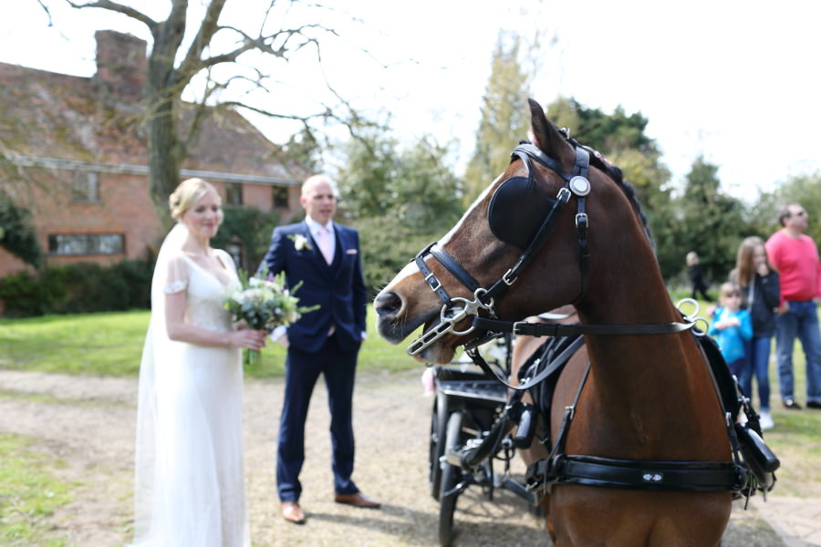 the bride arrived at her essex wedding on a horse and cart!