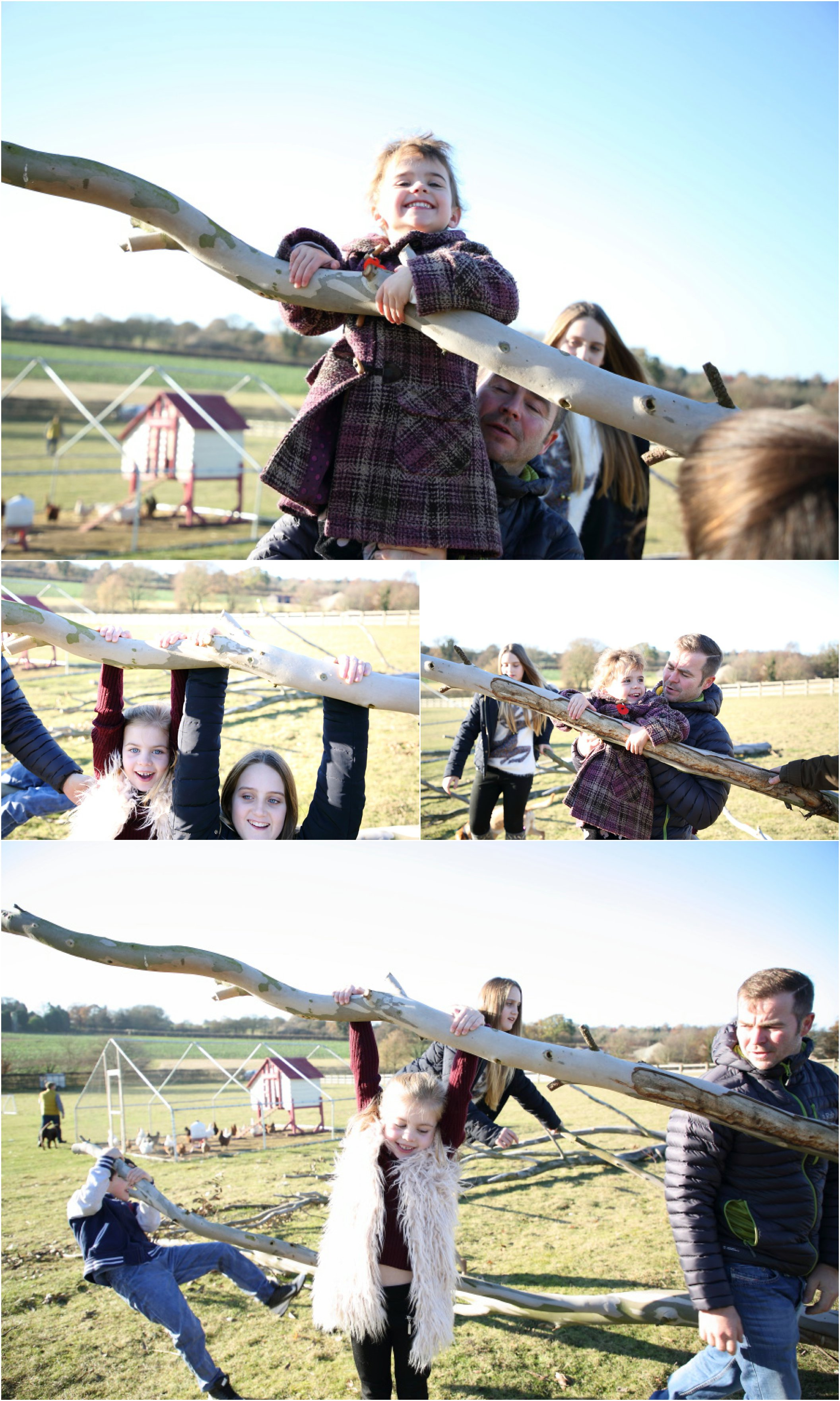 relaxed informal family photography in suffolk, winter sunshine on the farm