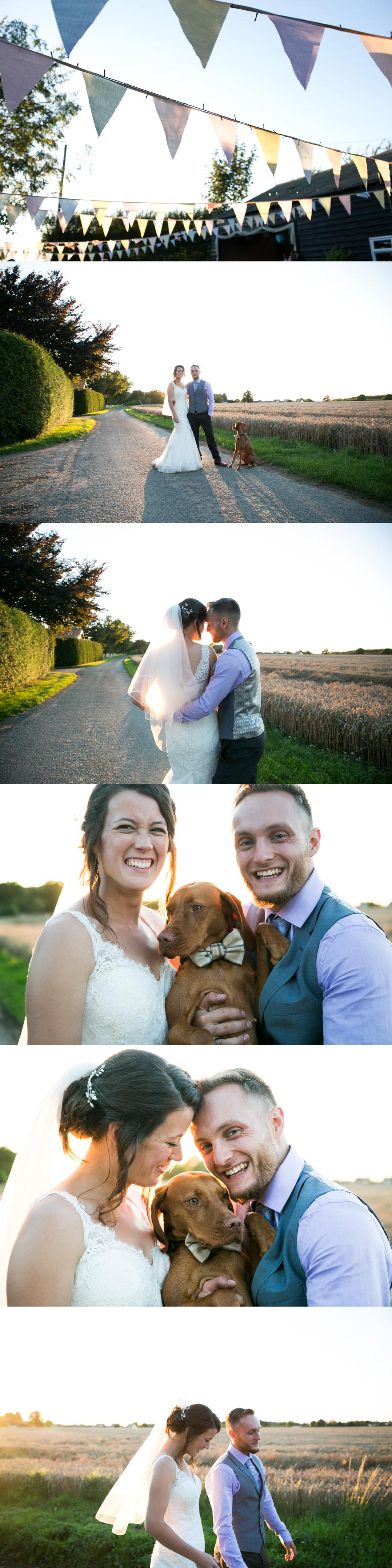 gorgeous golden hour wedding photos with dog and bunting