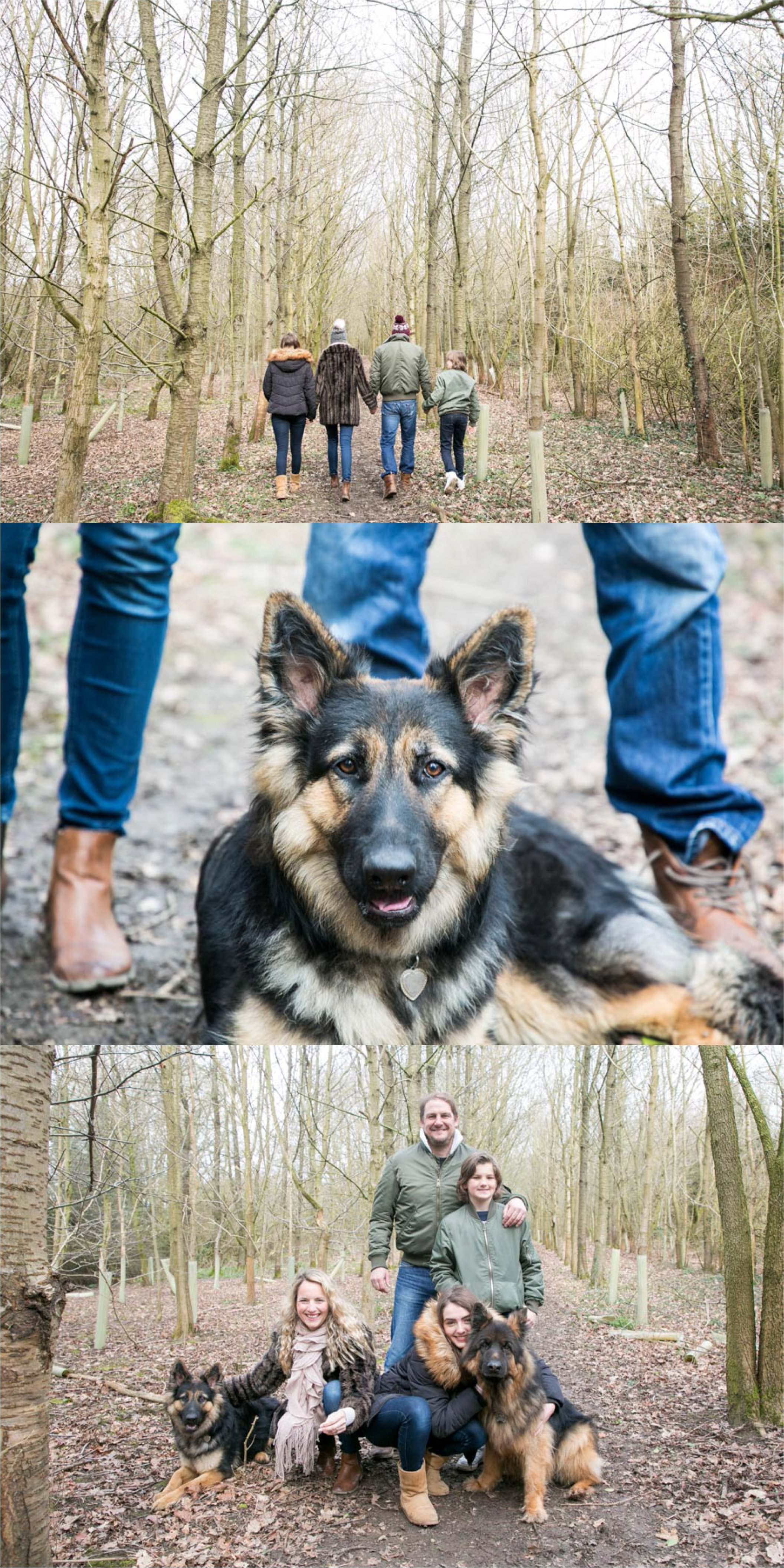 fun family photography with pet dogs in woodland Suffolk