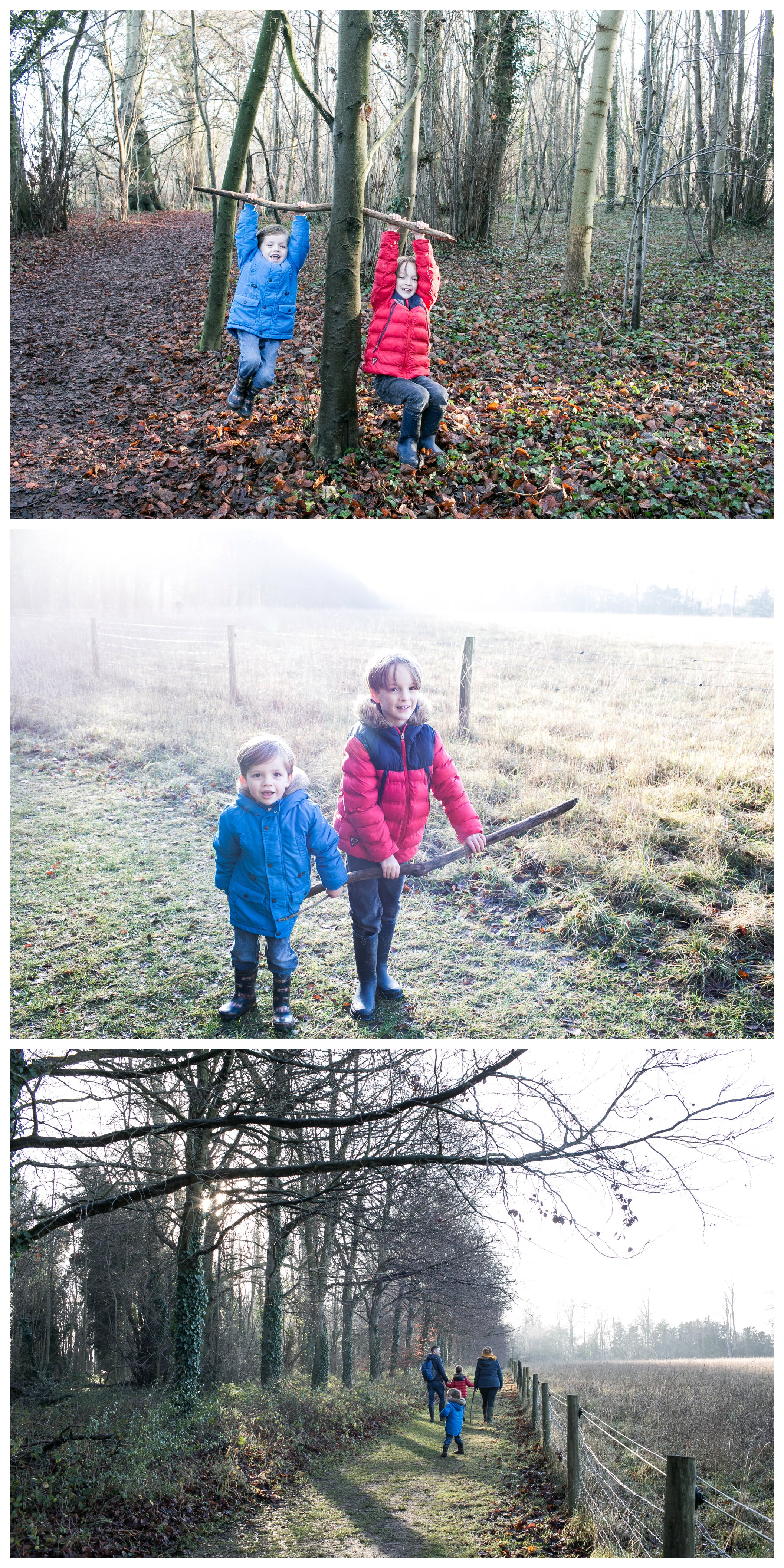boys playing in the woods on family walk