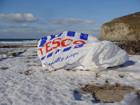 Carrier Bag washed up on a beach