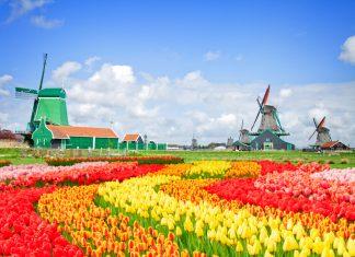 Kurztrip nach Holland