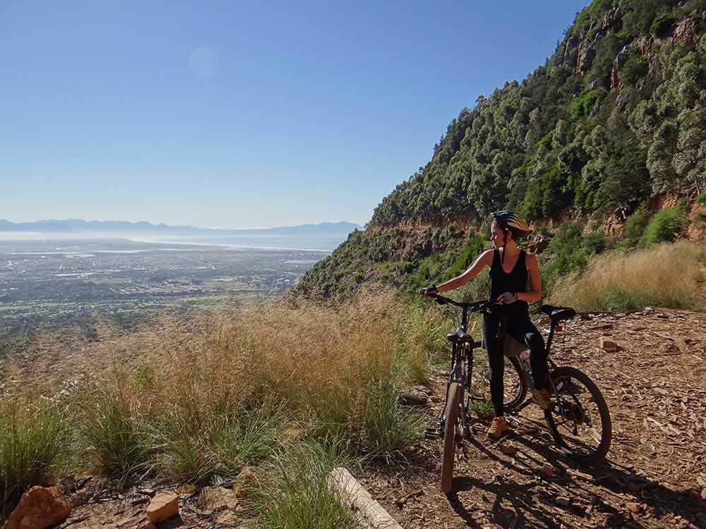 The Mountain Biker