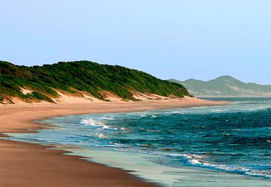 White Pearl   Dunes and Beach