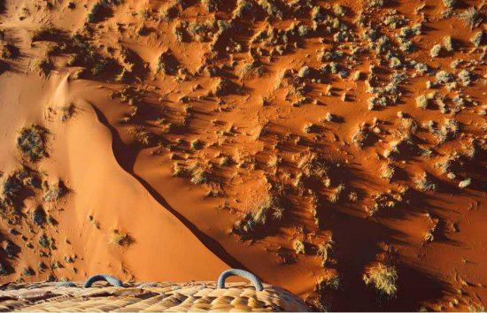 Lyons | Deserts