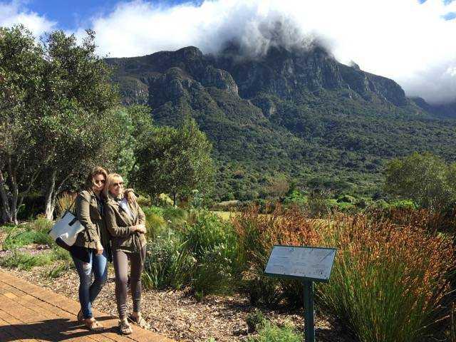 Walking around the stunning Kirstenbosch Botanical Gardens in Cape Town