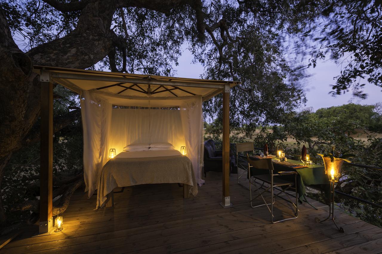 Ein Bett in den Baumkronen des Ruckomechi Camps