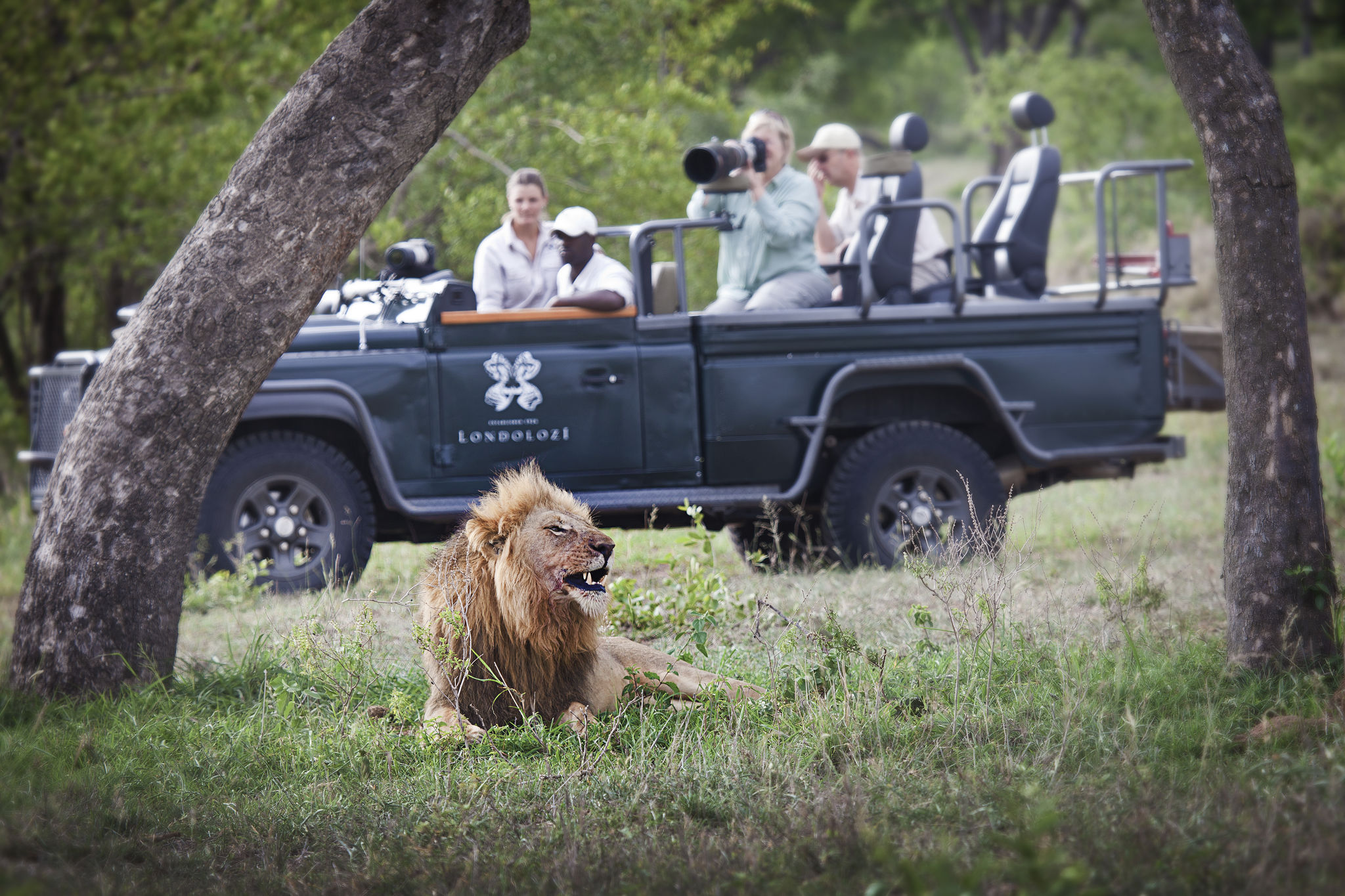 londolozi-activities-photographic-safari-02
