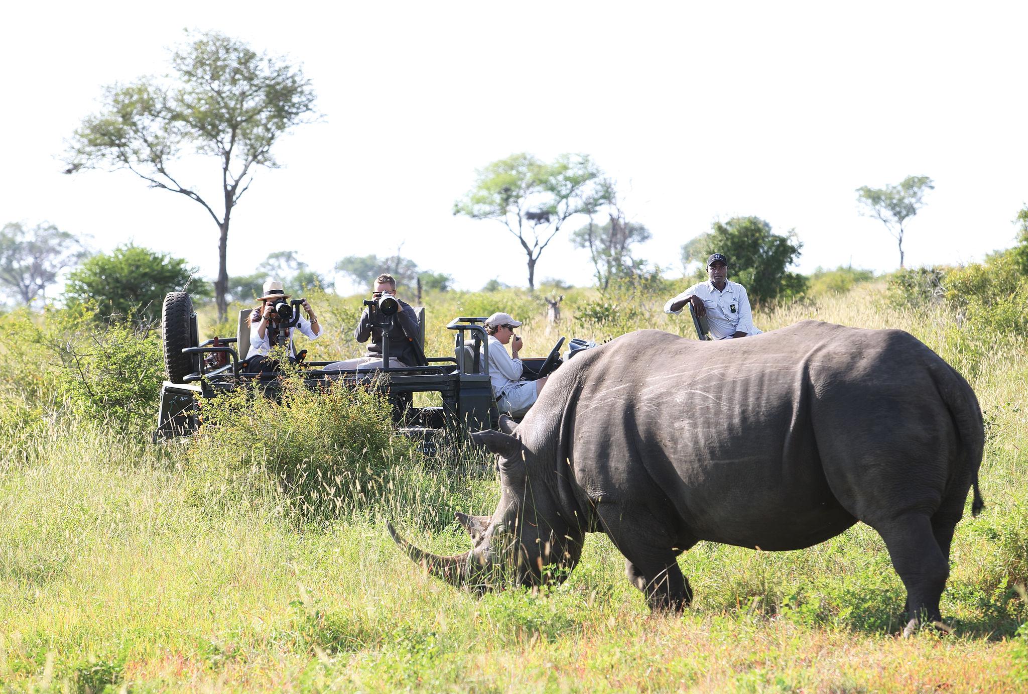 londolozi-activities-photographic-safari-03