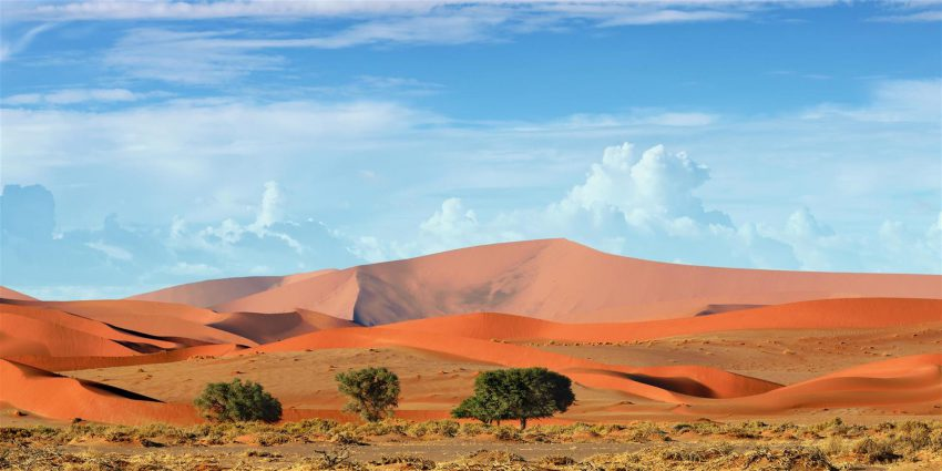 panorama des paysages de dunbes de sable orange sossusvlei namibie
