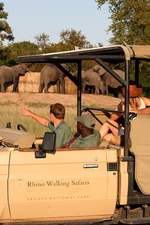 Image Credit: Rhino Post Safari Lodge