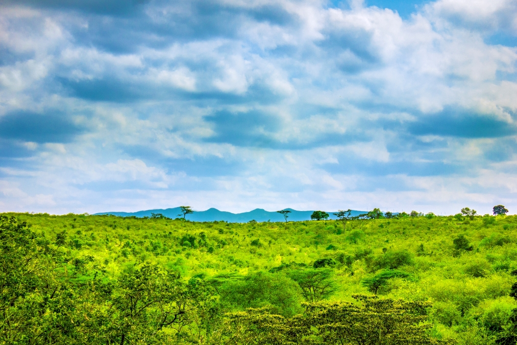 Ngong'_Hills,_Nairobi,_Kenya