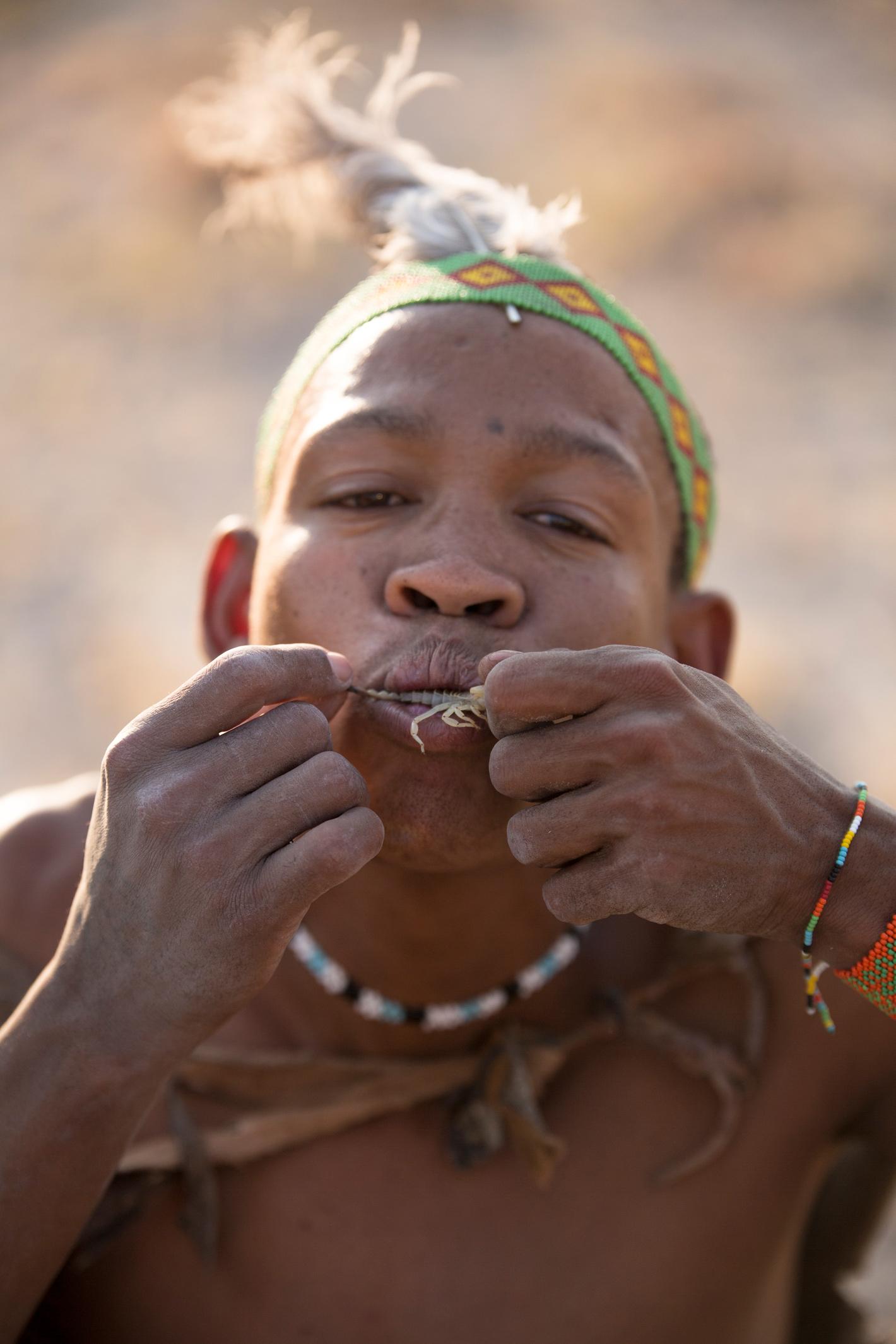 bushman eats scorpion