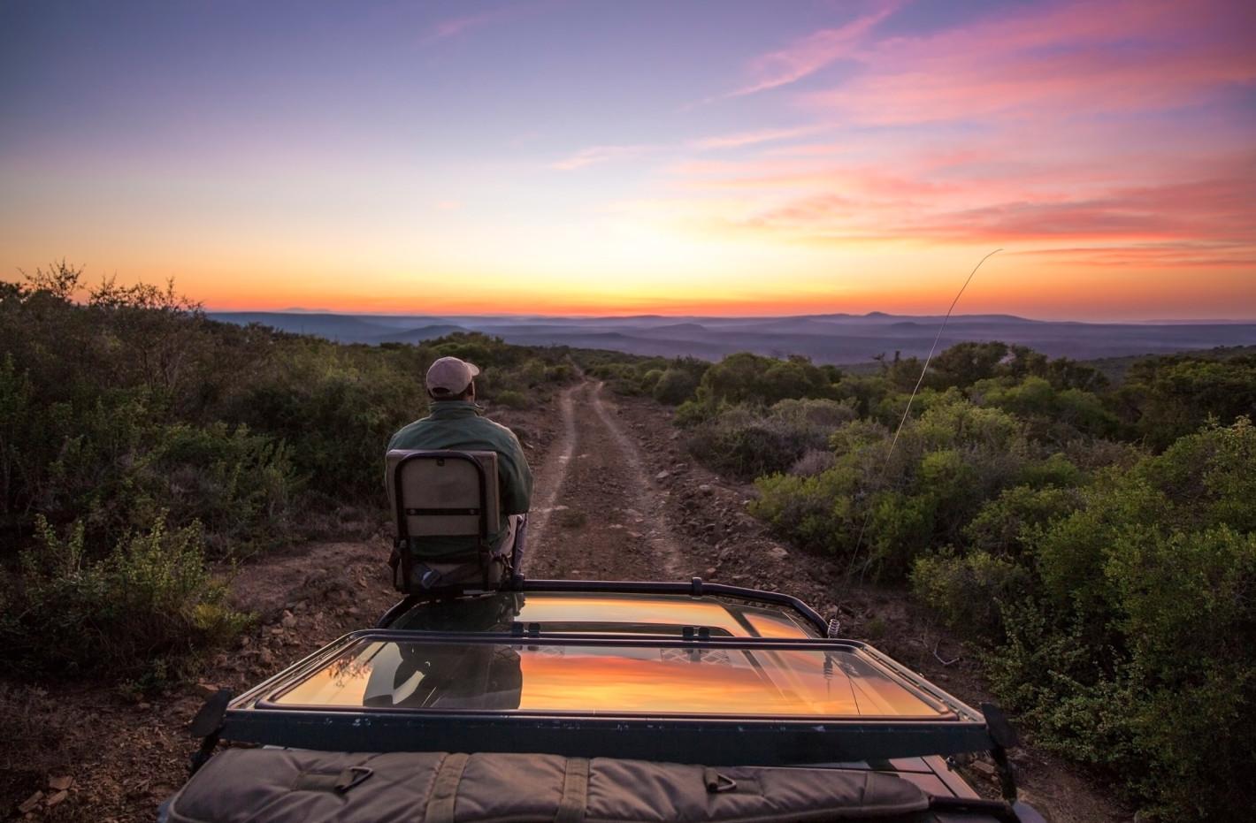 leading lines wildlife photography