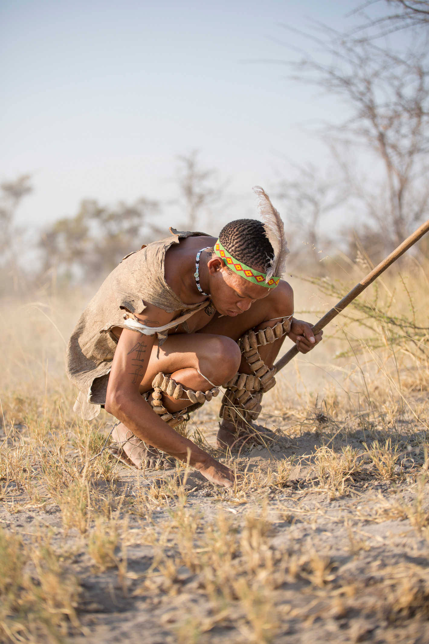 tracking with a bushman