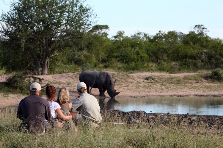 Safari a pie en la Reserva Privada de Animales MalaMala
